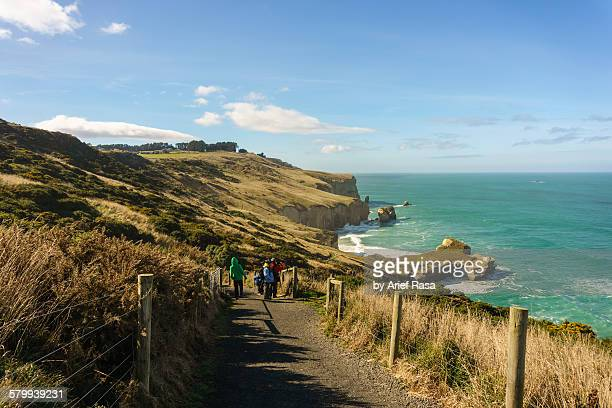 pathway to tunnel beach, dunedin - pedestrian walkway stock pictures, royalty-free photos & images