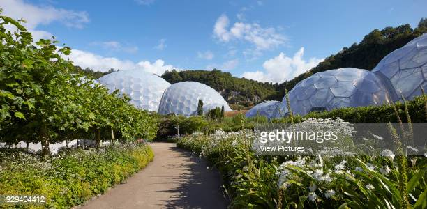 Pathways and flowers in bloom Eden Project Bodelva United Kingdom Architect Grimshaw 2016