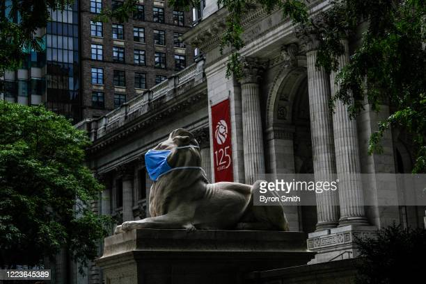 Patience and Fortitude, the marble lion statues at the entrance to the New York Public Library, are adorned with face masks on June 30, 2020 in New...
