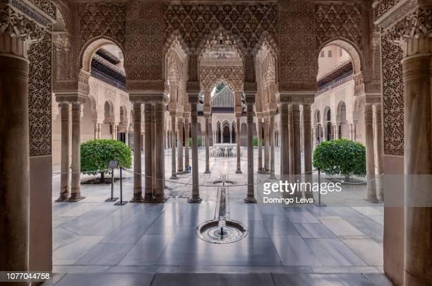 patio de los leones, alhambra de granada, spain - alhambra spain stock pictures, royalty-free photos & images