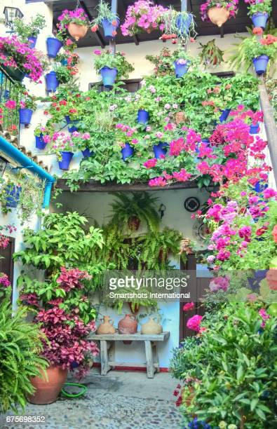 Patio in Cordoba, Spain, with hundreds of potted plants and flowers