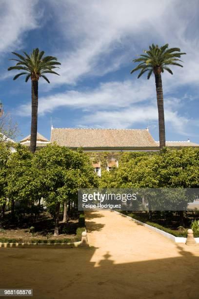 Patio of Las Dues palace, where the poet Antonio Machado was born, Seville, Spain