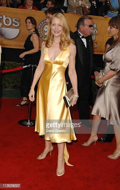 Patricia Clarkson 1068_sg0988jpg during TNT Broadcasts 12th Annual Screen Actors Guild Awards Arrivals at Shrine Expo Hall in Los Angeles California...