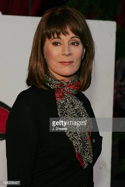 Patricia Richardson during 2nd Annual Night with the Friends of El Faro Fundraiser at Santa Monica Airport in Santa Monica California United States
