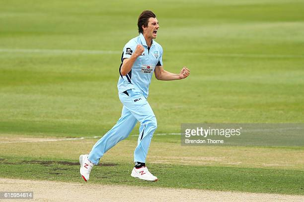 Patrick Cummins of the Blues celebrates after claiming the wicket of Cameron White of the Bushrangers during the Matador BBQs One Day Cup match...