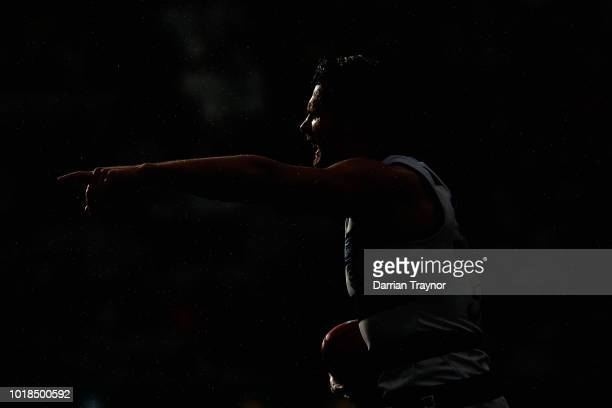 Patrick Dangerfield of the Cats asks the umpire where the mark is during the round 22 AFL match between the Geelong Cats and the Fremantle Dockers at...