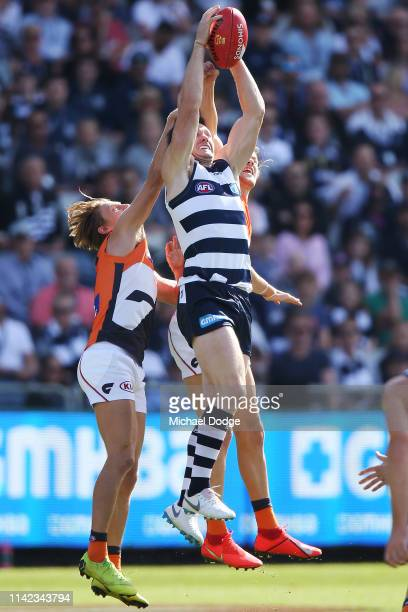 Patrick Dangerfield of the Cats competes for the ball during the round four AFL match between the Geelong Cats and the Greater Western Sydney GIants...