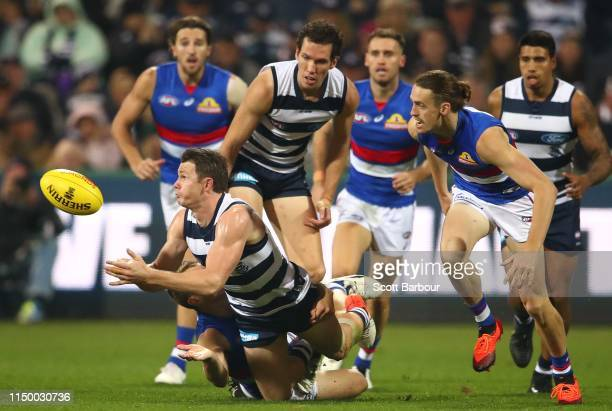 Patrick Dangerfield of the Cats competes for the ball during the round nine AFL match between the Geelong Cats and the Western Bulldogs at GMHBA...