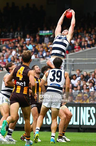 Patrick Dangerfield of the Cats takes a spectacular mark during the round one AFL match between the Geelong Cats and the Hawthorn Hawks at the...