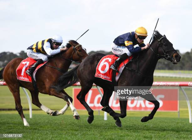 General view of horses racing up the home straight during Melbourne Racing at Sandown Hillside on August 15 2018 in Melbourne Australia