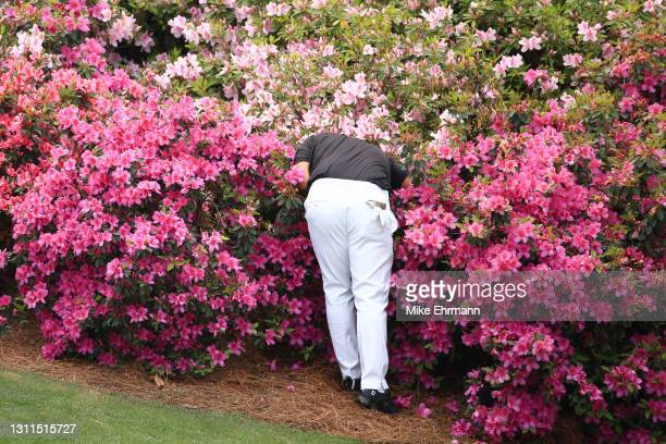 Patrick Reed of the United States searches for his ball on the 13th hole during the first round of the Masters at Augusta National Golf Club on April...