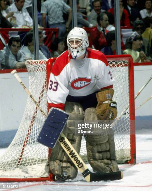 Patrick Roy of the Montreal Canadiens stands in his crease during an NHL game in his rookie year of 198586