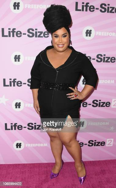 Patrick Starrr attends Life Size 2 World Premiere at Hollywood Roosevelt Hotel on November 27 2018 in Hollywood California