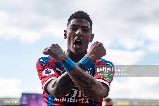 Patrick van Aanholt of Crystal Palace celebrates after scoring a goal during the Premier League match between Crystal Palace and AFC Bournemouth at...