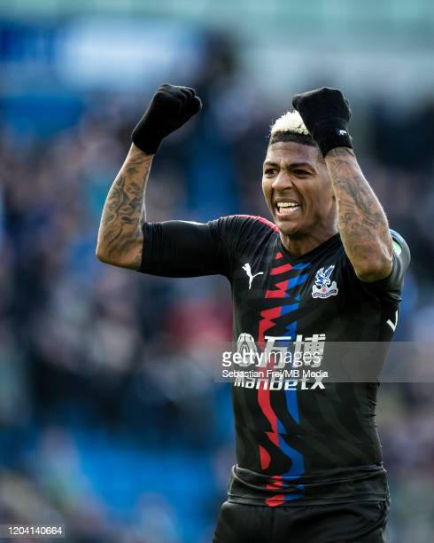 Patrick van Aanholt of Crystal Palace celebrates during the Premier League match between Brighton Hove Albion and Crystal Palace at American Express...