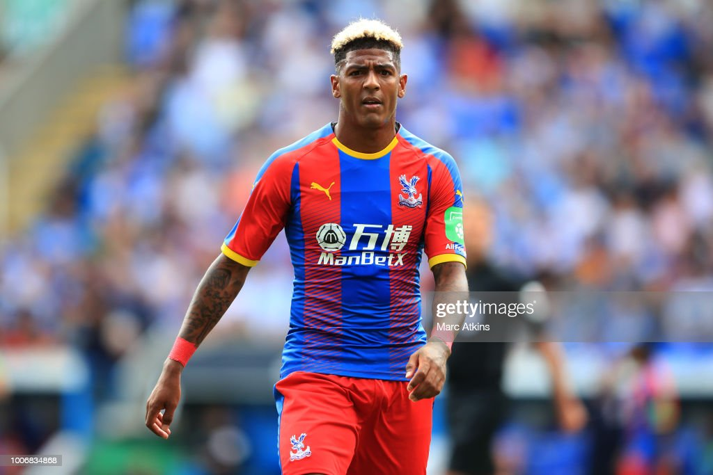 Patrick van Aanholt of Crystal Palace during the Pre-Season Friendly between Reading and Crystal Palace at Madejski Stadium on July 28, 2018 in Reading, England.