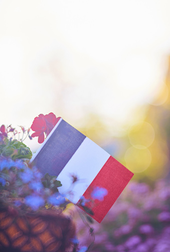 Patriotic French flag background with flowers and sun flare 974535740