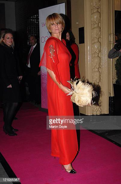 Patsy Palmer attends the Pink Ice Ball October 5 2007 in London England
