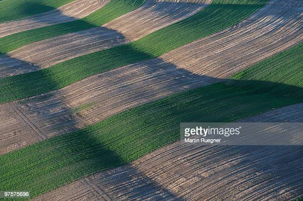Pattern in fields, aerial shot.