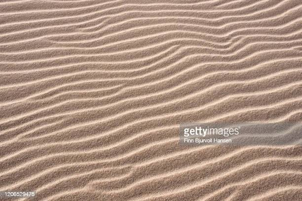 patterns and textures in the sand at the beach - finn bjurvoll stockfoto's en -beelden