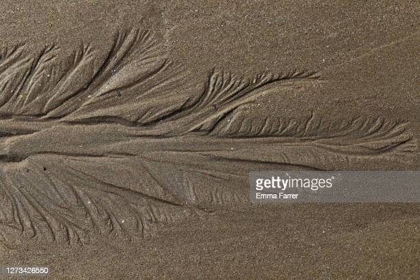 patterns in sand - sand stock pictures, royalty-free photos & images