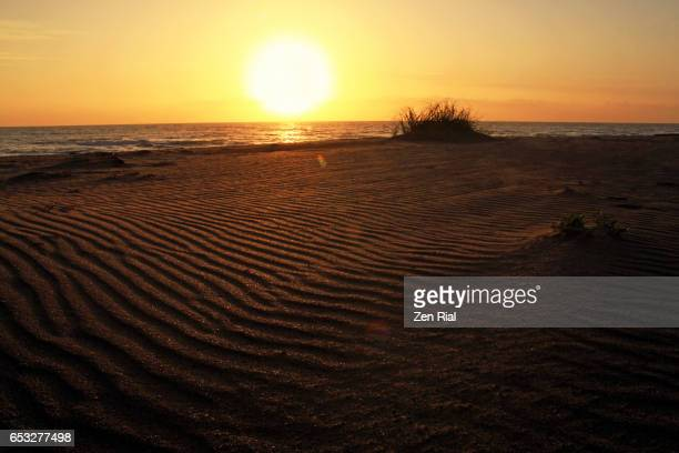 patterns in the sand at the beach at sunrise in fort pierce, florida usa - zen rial stock photos and pictures