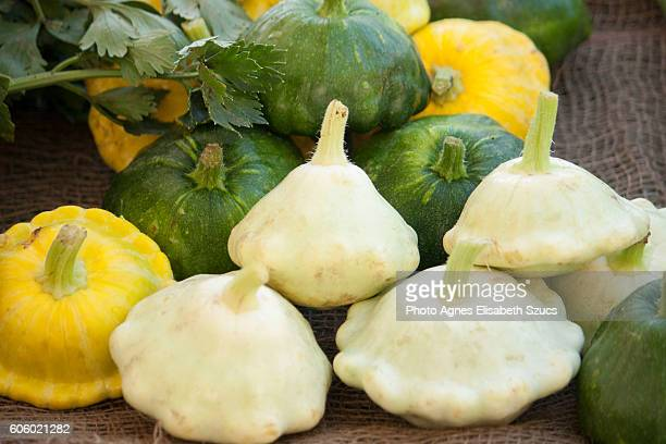 Pattypan squash green, yellow, white