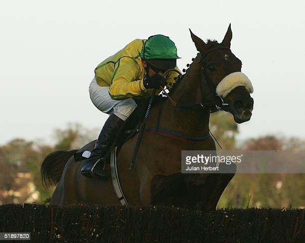 Paul Carberry and Beef Or Salmon clear the last to land The Lexus Steeple Chase Race run at Leopardstown Racecourse on December 28 2004 in Dublin...