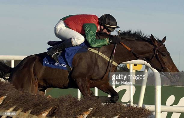 Paul Carberry and Solerina clear the last flight to land The Golden Cygnet Novice Hurdle Race run at Leopardstown Racecourse on January 26 2003 in...