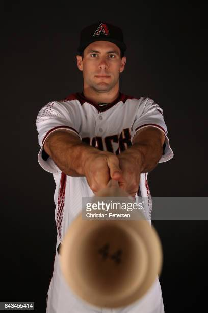 Paul Goldschmidt of the Arizona Diamondbacks poses for a portrait during photo day at Salt River Fields at Talking Stick on February 21, 2017 in...