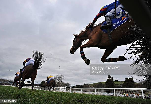 Paul Hamblin riding Dumosa jumps the last hurdle before unplaced finish in Race 4 The Ecycle Grand National Steeplechase during Grand National...
