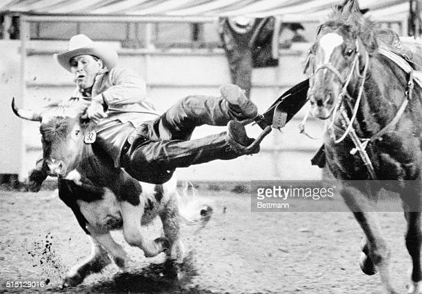 Paul Hughes dives onto a steer he will bring down in 58 seconds during the Friday night performance of the National Finals Rodeo The Kim Colorado...