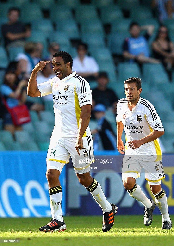 A-League Rd 21 - Sydney v Wellington