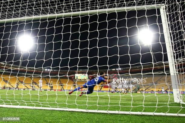 Paul Izzo of Adelaide United makes a save during the round 18 ALeague match between the Wellington Phoenix and Adelaide United at Westpac Stadium on...