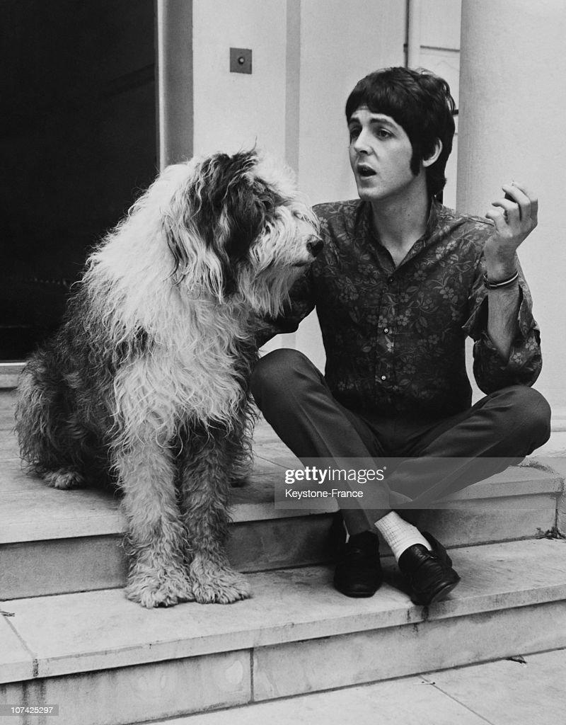 Paul Mccartney And His Dog Martha During Sixties : News Photo