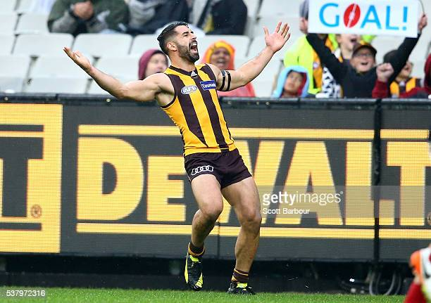 Paul Puopolo of the Hawks celebrates after kicking a goal during the round 11 AFL match between the Hawthorn Hawks and Melbourne Demons at Melbourne...