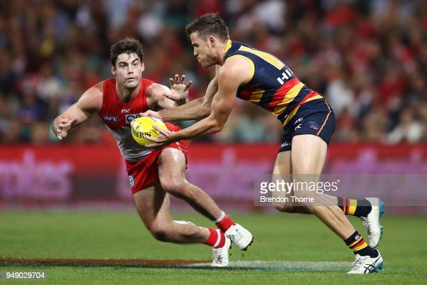 Paul Seedsman of the Crows contests the ball George Hewett of the Swans during the round five AFL match between the Sydney Swans and the Adelaide...