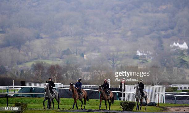 Paul Townend riding Quevega with the Willie Mullins string on the gallops at Cheltenham racecourse on March 10 2013 in Cheltenham England