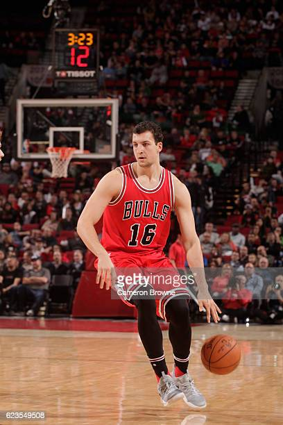 Paul Zipser of the Chicago Bulls handles the ball against the Portland Trail Blazers on November 15 2016 at the Moda Center in Portland Oregon NOTE...
