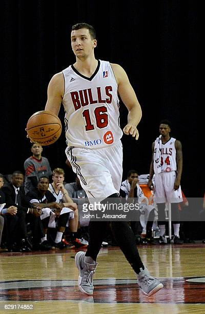 Paul Zipser of the Windy City Bulls handles the ball against Canton Charge on December 9 2016 at the Sears Centre Arena in Hoffman Estates Illinois...
