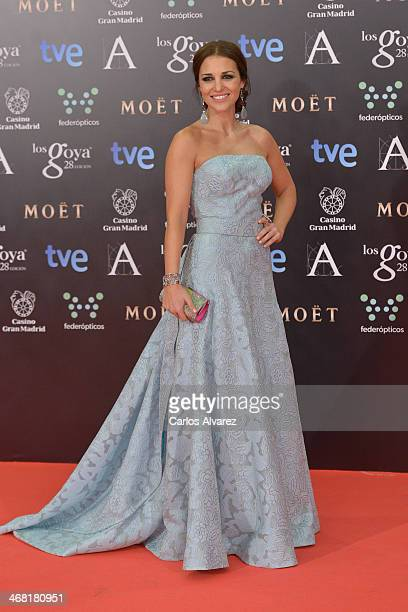 Paula Echevarria attends Goya Cinema Awards 2014 at Centro de Congresos Principe Felipe on February 9 2014 in Madrid Spain