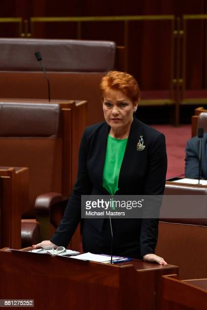 Pauline Hanson speaks in favour of her amendment to the marriage equality bill in the Senate at Parliament House on November 29 2017 in Canberra...