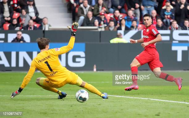 Paulinho of Bayer 04 Leverkusen scores his team's third goal past Kevin Trapp of Eintracht Frankfurt during the Bundesliga match between Bayer 04...