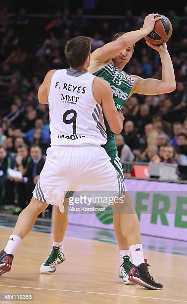 Paulius Jankunas #13 of Zalgiris Kaunas competes with Felipe Reyes #9 of Real Madrid in action during the 20132014 Turkish Airlines Euroleague Top 16...