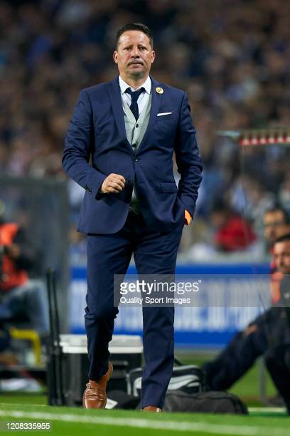 Paulo Sergio the manager of Portimonense SC looks on during the Liga Nos match between FC Porto and Portimonense SC at Estadio do Dragao on February...