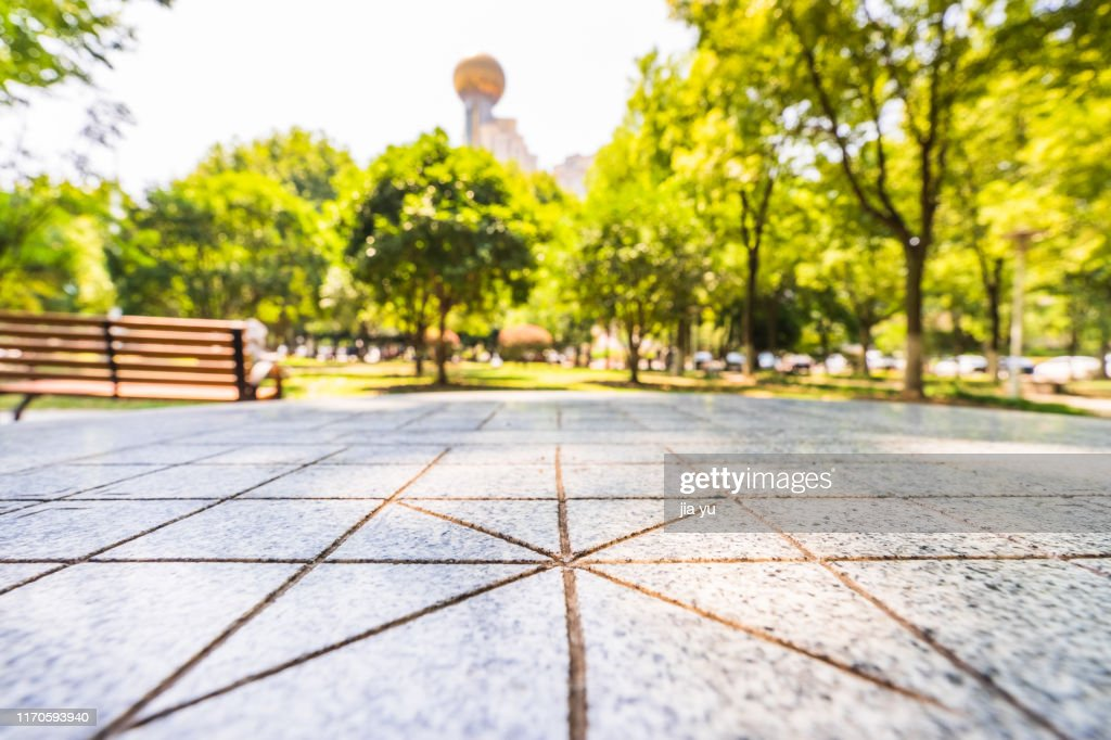 Paved road with blurred background : Stock Photo