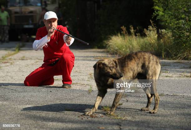 Pavel 'Pasha' Burkatsky a professional dog catcher from Kiev takes aim with a blow gun to shoot a tranquilizer dart at a stray dog in the exclusion...