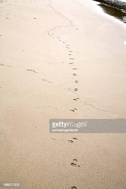 砂の足形の向かい側
