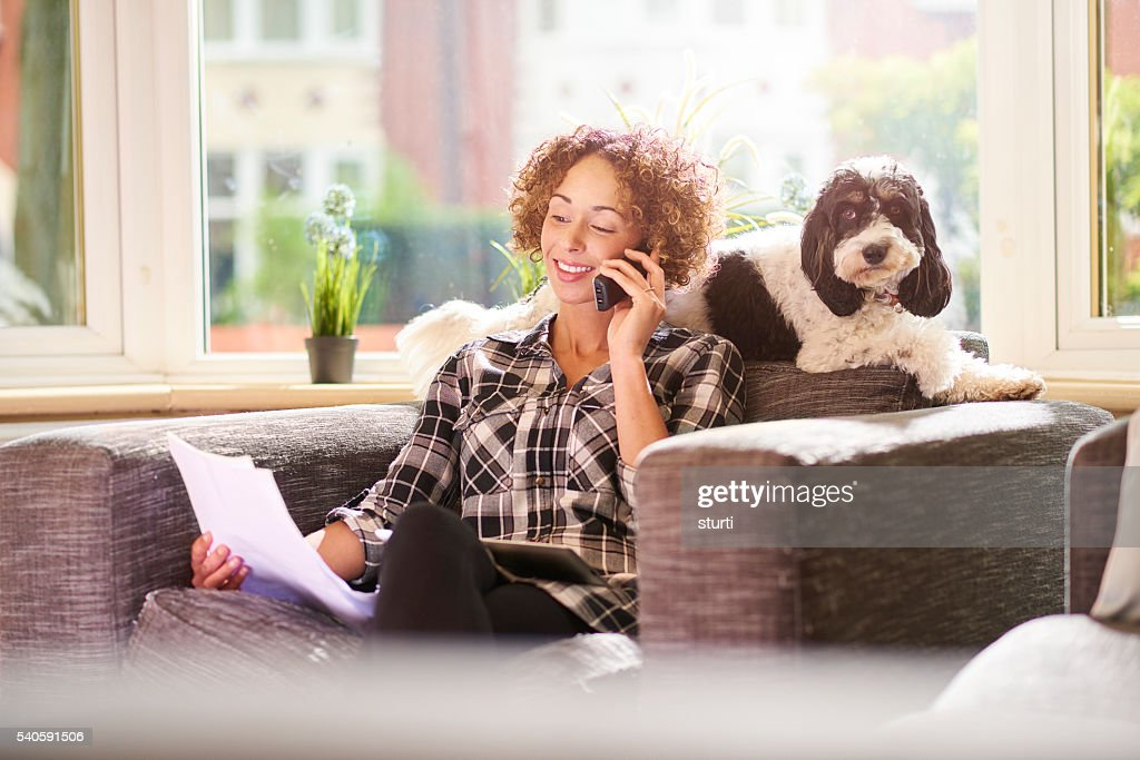 paying the pet insurance : Stock Photo