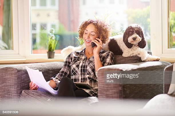 paying the pet insurance - home insurance stock pictures, royalty-free photos & images